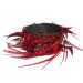 Red Grizzly Feather/Leather Spiked Cuff