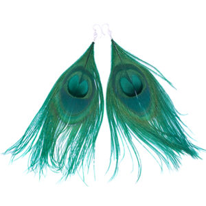Brown Round Peacock Feather Earrings